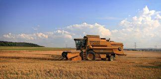 Next Big Think: Digitalisierung mit Nachhaltigkeit in der Agrarwirtschaft