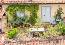Garten auf Terasse
